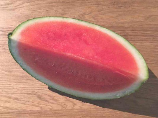 Kochblog-mokowo-melone