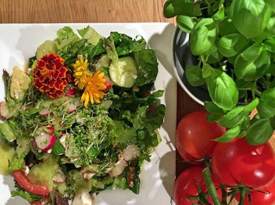 Kochblog-mokowo-avocadosalat und basilkum