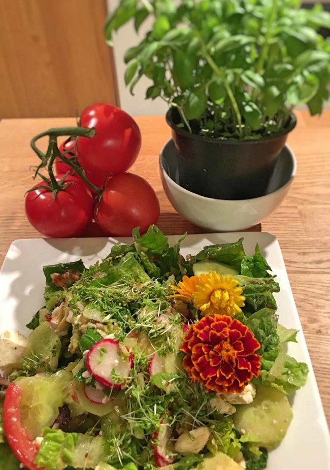mokowo-foodblog-avocadosalat-zutaten