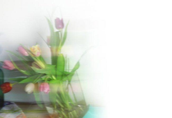 Bild mit Tulpen - verschwommen in Bewegung - Frühling Blog