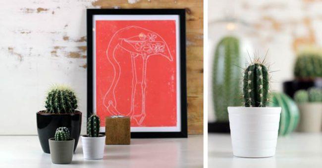 Bild mit rotem Flamingo Bild und Kaktuss und Kakteen - Interiorblog