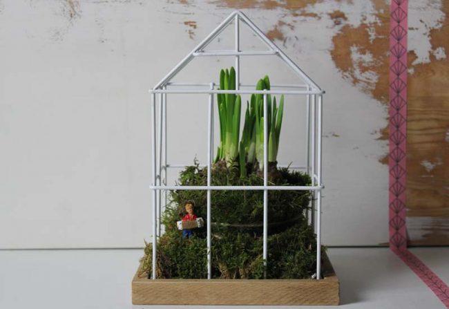 Bild mit Gitterhaus und Frühlingsblühern als Frühlingstrend