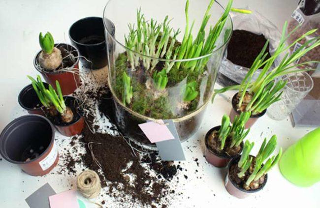 Bild mit Frühlingsblühern und Bepflanzen der Glasvase-Dekoideen große Glasvase-Bodenvase