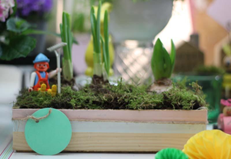 Eine holzkiste bepflanzen und dekorieren diy mokowo wohnblog - Holzkiste dekorieren ...