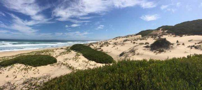 Bild vom Strand Südafrika zum Thema Auszeit nehmen Blog