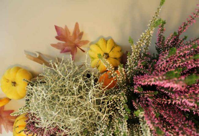 stimmungsvolle Herbstdeko selber machen aus Moos, Pilzen,Tannenzapfen, Kerzen, Kürbissen und Holz und Naturmaterialien